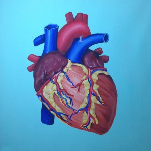 Halle Magid created a painting of an anatomical heart for her project.