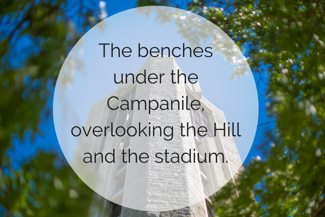 The benches under the Campanile, overlooking the Hill and the stadium. The text overlays a picture of the top of the Campanile, visible between a gap in two trees.