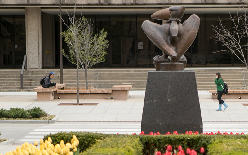 A picture of Wescoe beach. In the foreground is the metallic Jayhawk statue outside of Strong Hall, with yellow and red tulips at its base. There is a student sitting on a bench, and another student with blue boots walking from right to left.