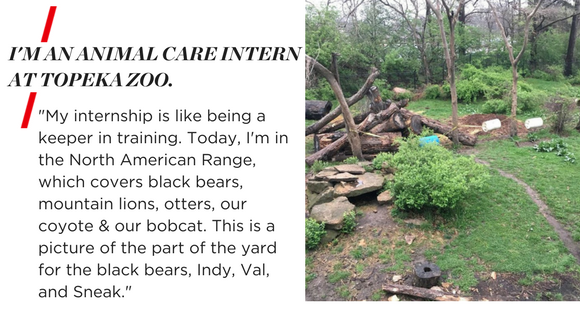 "I'M AN ANIMAL CARE INTERN AT TOPEKA ZOO. ""My internship is like being a keeper in training. Today, I'm in the North American Range, which covers black bears, mountain lions, otters, our coyote & our bobcat. This is a picture of the part of the yard for the black bears, Indy, Val, and Sneak."""