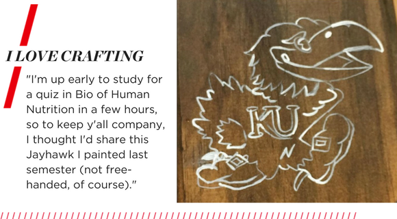 "I love crafting. ""I'm up early to study for a quiz in Bio of Human Nutrition in a few hours, so to keep y'all company, I thought I'd share this Jayhawk I painted last semester (not free-handed, of course)."""